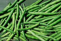 HS30-008z  Bean - green string beans - Provider variety