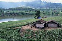 INDIA, Narmada river, tribal village Domkhedi, which will be submerged by SSP dam reservoir, homestead and sorghum fields / INDIEN, Narmada Fluss, Adivasi Dorf Domkhedi, das vom Stausee des SSP Staudamm überschwemmt wird