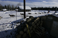 Bjonar Anderson of Norway arrives at the Nikolai checkpoint with a dog in the basket.  2005 Iditarod Trail Sled Dog Race.