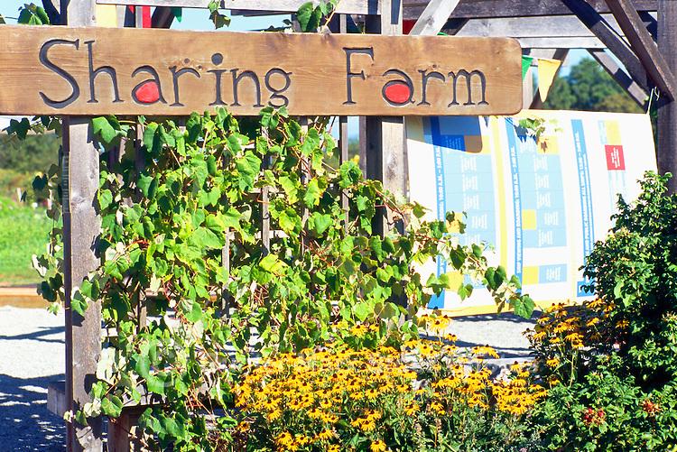 5th Annual Garlic Festival, August 2013 (hosted by The Sharing Farm) at Terra Nova Rural Park, Richmond, BC, British Columbia, Canada