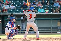 Rocket City Trash Pandas catcher Michael Cruz (3) at bat against the Tennessee Smokies at Smokies Stadium on July 2, 2021, in Kodak, Tennessee. (Danny Parker/Four Seam Images)