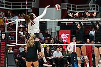 Stanford Volleyball W v University of Southern California, November 18, 2019