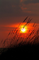 The setting sun burns orange red as it sets behind seagrass on the beaches of the North Carolina Outer Banks.