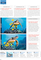 "Sport Diver Magazine, January / February 2012, ""Shooting Big Animals"" feature, editorial use, USA, Image ID:"