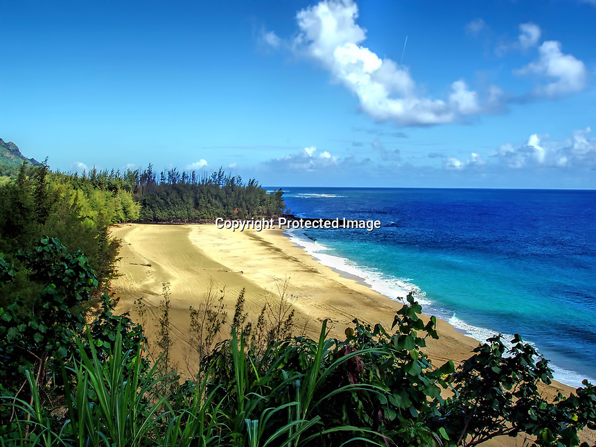 Lumahai Beach seen from the nearby ridge. Kauai, Hawaii