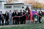 Smart Orion,ridden by Norihiro Yokoyama,wins the Ocean Stakes in Nakayama, Japan on March 8,2014.