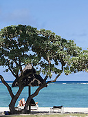 Flic en Flac, Mauritius. La Pirogue tourist resort. Sunlounger, tree and sea.