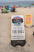 Ice Cream for Dogs.  Porthgwidden beach, St.Ives, Cornwall.
