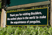 South Africa.  African Penguins at Boulders Beach, near Simon's Town, Farewell Sign, Western Cape Province.