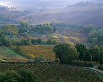 Tuscany, Italy<br /> Morning fog over Val d'Orcia vineyards below Montepulciano