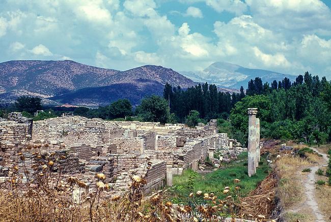 Aphrodisias, Residential Area