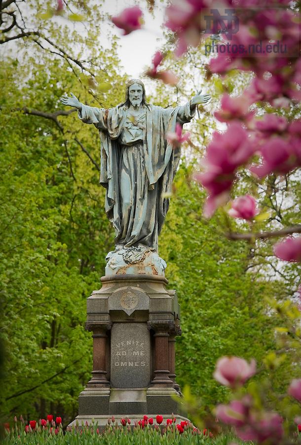 May 5, 2011; Jesus statue on Main Quad..Photo by Matt Cashore/University of Notre Dame