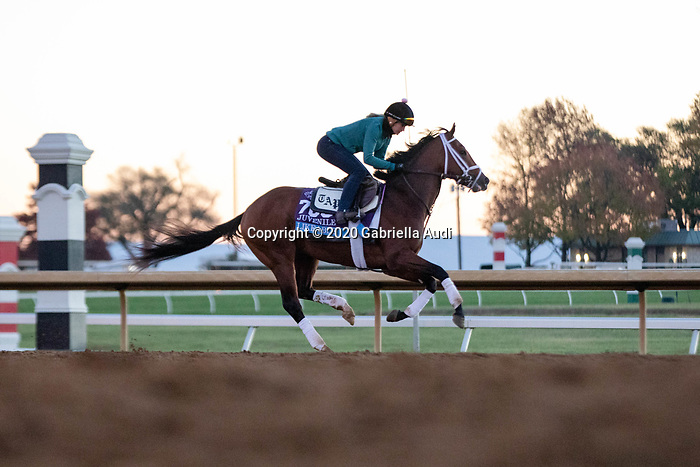 November 4, 2020: Likeable, trained by trainer Todd A. Pletcher, exercises in preparation for the Breeders' Cup Juvenile at Keeneland Racetrack in Lexington, Kentucky on November 4, 2020. Gabriella Audi/Eclipse Sportswire/Breeder's Cup/CSM