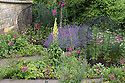 07/07/15 ***FOR ILLUSTRATION/REFERENCE ONLY***<br /> <br /> The Poison Garden, Alnwick Garden.<br /> <br /> Photo 0023.<br /> 1. Lobelia tupa<br /> 2. Nepeta x faassenii<br /> 3. Cannabis sativa<br /> 4. Verbascum olympicum<br /> 8. Aquilegia vulgaris<br /> 9. Cynoglossum officinale<br /> 10. Aquilegia vulgaris<br /> 11. Digitalis purpurea<br /> 12. Echium vulgare<br /> 13. Rosmarinus officinalis<br /> 14 Cynoglossum officinale<br /> 15. Oenanthe crocata<br /> 16. Conium maculatum<br /> 17. Malus 'John Downie'<br /> 19. Rosmarinus officinalis<br /> <br /> All Rights Reserved: F Stop Press Ltd. +44(0)1335 418629   www.fstoppress.com.
