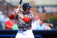 Reading Fightin Phils catcher Joel Fisher (30) at bat during a game against the New Hampshire Fisher Cats on June 6, 2016 at FirstEnergy Stadium in Reading, Pennsylvania.  Reading defeated New Hampshire 2-1.  (Mike Janes/Four Seam Images)