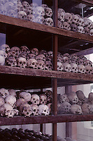 KILLING FIELDS, SKULLS