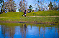 Henley Lake in Masterton, New Zealand on Friday, 4 August 2020. Photo: Dave Lintott / lintottphoto.co.nz