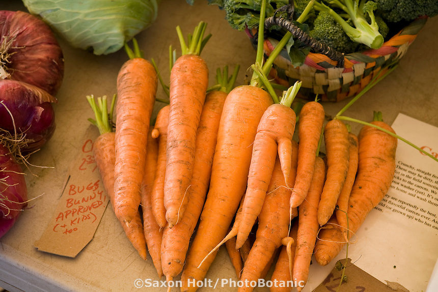 Organic vegetables on display at local farm stand in California, Tierra Vegetable garden