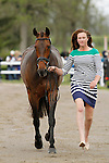 LEXINGTON, KY - APRIL 27: #79 Veronica and rider Lauren Kieffer,  jog before the vets and grand jury during the first horse inspection for the Rolex Three Day Event on Wednesday April 27, 2016 in Lexington, Kentucky. (Photo by Candice Chavez/Eclipse Sportswire/Getty Images)