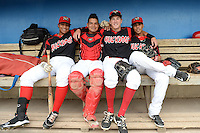 08.11.2014 - MiLB Brooklyn vs Batavia