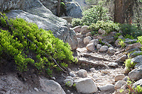 Along the Fern Lake trail, Rocky Mountain National Park, late afternoon