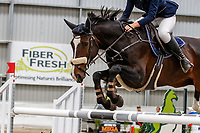 Class 30: Sky Sport Next 1.30m-1.35m 10K - FINAL. 2021 NZL-Easter Jumping Festival presented by McIntosh Global Equestrian and Equestrian Entries. NEC Taupo. Sunday 4 April. Copyright Photo: Libby Law Photography