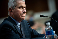 Anthony Fauci, director of the National Institute of Allergy and Infectious Diseases, listens during a Senate Health, Education, Labor and Pensions Committee hearing in Washington, D.C., U.S., on Tuesday, June 30, 2020. Top federal health officials are expected to discuss efforts to get back to work and school during the coronavirus pandemic. <br /> Credit: Al Drago/CNP/AdMedia