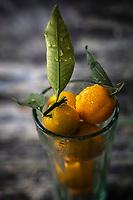 Gastronomie générale/ Diététique/  Kumquat  Bio  // General gastronomy / Diet / Organic Kumquat