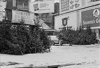 Vente de sapins de Noel au Centre-Ville, 8 Decembre 1972<br /> <br /> PHOTO : Agence Quebec Presse -  Alain Renaud