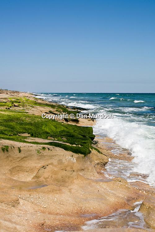 Coastal rock formation in St. Augustine, Florida