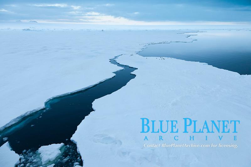 The edge of the fast ice along the shore, near Paulet Island, Antarctic Peninsula, Antarctica, Southern Ocean