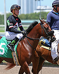 July 19, 2015: Two year old Bay Runner (FL) with jockey Tyler Gaffalione breaks his maiden at Gulfstream Park in Hallandale Beach, FL.  Liz Lamont/ESW/CSM