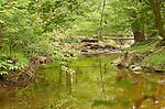 Great Falls Park, Potomac River, Fairfax County, Virginia