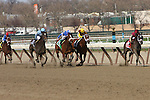 2011 04 09: Hot Summer and Luis Saez down the stretch in the Grade 3 at 1 mile at Aqueduct Racetrack. Trainer David Fawkes. Owner Harold L. Queen