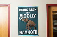 """A sign reading """"Bring Back the Woolly Mammoth"""" is seen in George Church's Lab in the New Research Building at Harvard Medical School's Department of Genetics in Boston, Massachusetts, USA, on Tues., Sept. 5, 2017. Church has said that geneticists are two years away from synthetically creating or otherwise bringing back a woolly mammoth through targeted gene editing techniques. The race to create a woolly mammoth has recently been chronicled in the book """"Woolly: The True Story of the Quest to Revive One of History's Most Iconic Extinct Creatures,"""" written by Ben Mezrich and soon to be a major motion picture."""