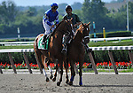 09 June 27: Flashing prior to the 53rd running of the grade 1 Mother Goose Stakes for three year old fillies at Belmont Park in Elmont, New York.
