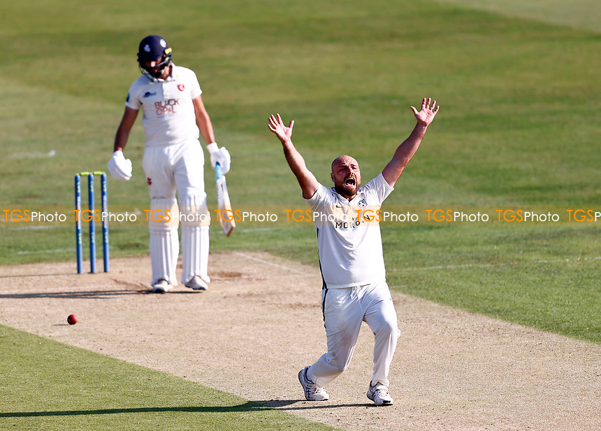 Joe Leach of Worcestershire appeals for an LBW during Kent CCC vs Worcestershire CCC, LV Insurance County Championship Division 3 Cricket at The Spitfire Ground on 5th September 2021