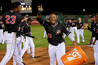 Batavia Muckdogs Brayan Hernandez (23) and Albert Guaimaro (13) celebrate after a walk off win during a NY-Penn League game against the State College Spikes on July 1, 2019 at Dwyer Stadium in Batavia, New York.  Batavia defeated State College 5-4.  (Mike Janes/Four Seam Images)