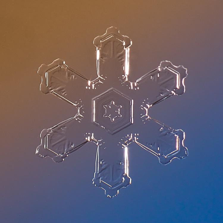 Snowflake Olivine - Stellar Plate Snowflake