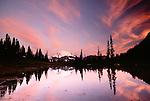 Mount Rainier reflection, Mount Rainier National Park, Washington