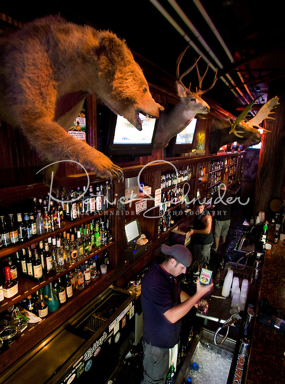 Animal trophies  on the walls help set the tone of Buckhead Saloon in Charlotte, NC. Photos taken with permission of bar management.