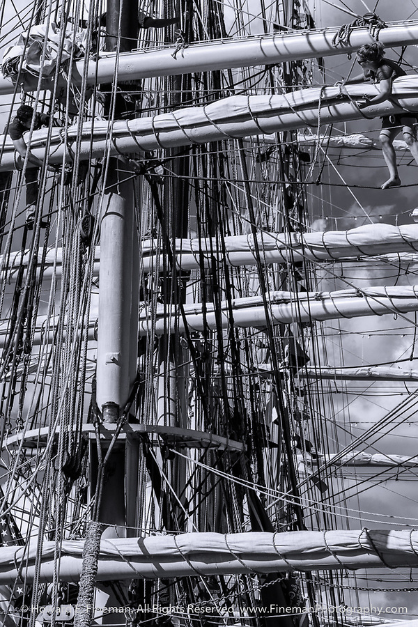 Order & Chaos 10, Up in the rigging on the Picton Castle