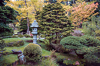 Japanese Tea Garden in Golden Gate Park, San Francisco, California. Stone lantern and evergreens.