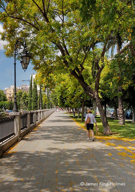The Passeig Mallorca in the central area of Palma de Mallorca, The Passeig is a quiet tree-lined walk by the side of the Torrent de Sa Riere, a 400-year old water chanel or canal flowing through the city which carries snow-melt and rain from the mountains in the winter and spring.