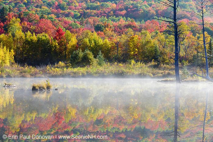 Wildlife Pond in Bethlehem, New Hampshire USA on a foggy autumn morning.