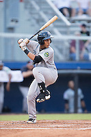 Oswaldo Cabrera (69) of the Pulaski Yankees at bat against the Danville Braves at American Legion Post 325 Field on August 1, 2016 in Danville, Virginia.  The Yankees defeated the Braves 4-1.  (Brian Westerholt/Four Seam Images)