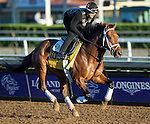 ARCADIA, CA - NOV 02: Keen Ice, owned by Donegal Racing and trained by Todd A. Pletcher, exercises in preparation for the Breeders' Cup Classic at Santa Anita Park on November 2, 2016 in Arcadia, California. (Photo by Kazushi Ishida/Eclipse Sportswire/Breeders' Cup)