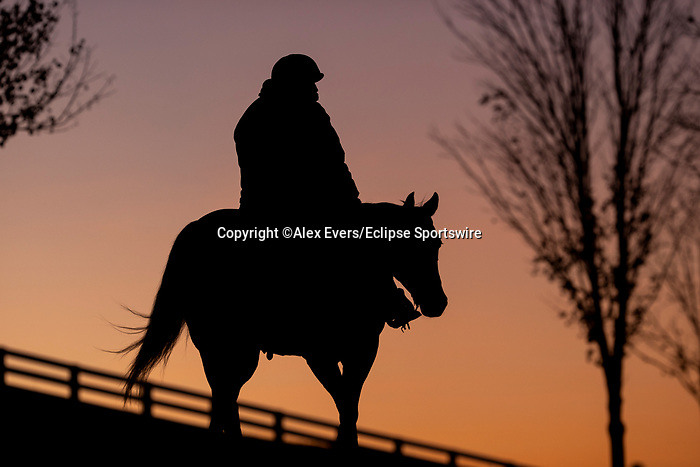November 3, 2020: Scenes from workouts at Keeneland Racetrack in Lexington, Kentucky on November 3, 2020. Alex Evers/Eclipse Sportswire/Breeders Cup