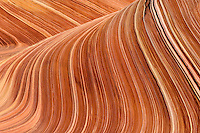 Curves and lines of sandstone in Coyote Buttes North.