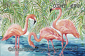 Malenda, REALISTIC ANIMALS, REALISTISCHE TIERE, ANIMALES REALISTICOS, paintings+++++,USMT498,#a#, EVERYDAY,flamingo
